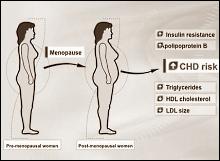 overgang vrouwen